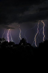 Static image. (PommieDad) Tags: storm electric blue thunder lightning sky night trees clouds australia newsouthwales nsw tweedheads tweedvalley lightningstrike silhouette
