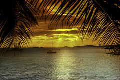 A Place In the Sun (Bernai Velarde-Light Seeker) Tags: sail boat sunset dawn palms sea ocean pacific panama centralamerica mar sol atardecer oceanopacifico palmas velero bernai velarde centro america