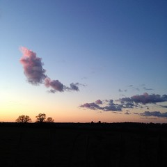 (ben ot) Tags: cloud nuage sarthe field prs