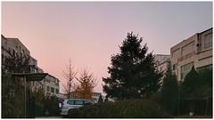 Upcoming orange alert ( - QSW) Tags: china sony urban city