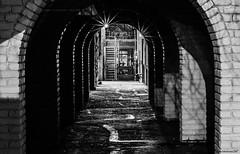 Helmcken Alley (Insomnious247) Tags: helmcken alley victoria victoriabc victoriabccanada vancouverislandbc bastionsquare
