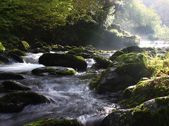 Watersmeet (Bob at Blashford) Tags: devon exmoor exmoornationalpark watersmeet water river longexposure sun movement canon550d