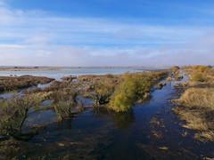 agua en la laguna (corbetapalentino) Tags: laguna de la nava