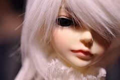Yuki (Mista-Oro) Tags: yuki msd megi dollzone