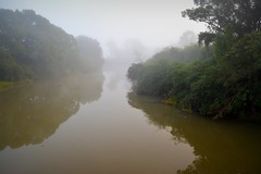 the dirty river (dustaway) Tags: winter water fog reflections river landscape countryside foggy earlymorning australia nsw australianlandscape lismore waterscape treesinfog northernrivers australianrivers wilsonsriver morninglandscape wilsonsrivervalley