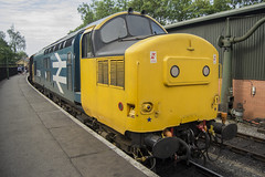 37264 Pickering (DM47744) Tags: railroad blue 3 tractor english electric train logo track br diesel yorkshire north transport traction large railway trains class type moors locomotive loc preserved 37 railways pickering nymr 37264