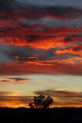 Sunrise 7 20 2014 #28 (Az Skies Photography) Tags: morning red arizona sky orange cloud sun black rio yellow skyline clouds sunrise canon skyscape eos rebel gold dawn golden salmon july az rico 20 rise daybreak 2014 arizonasky riorico rioricoaz arizonasunrise t2i arizonaskyline canoneosrebelt2i eosrebelt2i arizonaskyscape 7202014 july202014