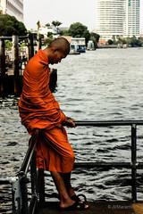 Buddhist Monk (JVMaramis) Tags: thailand juan bangkok buddhist monk jvm maramis juanmaramis