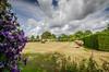 Italian Garden & Clematis (Stephen Reed) Tags: summer flower castle gardens kent italian nikon clematis hever d7000