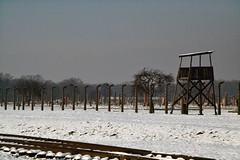 Auschwitz (026)