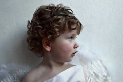 Cupidon 6 (Portrait Central) Tags: lighting boy red portrait brown white cute girl leaves kids angel hair studio children greek photography gold golden photo costume kid wings toddler heaven photographer child cosplay head central young picture curls medieval eros professional wreath curly blond photograph blonde cupid piece legend leafy mythology renaissance toga myth headband cupidon