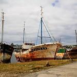 Camaret sur mer_11526 thumbnail