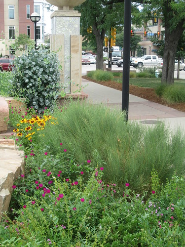 Photo - Sister Cities Garden 2 at Civic Area
