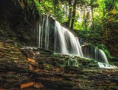 Ricketts Glen State Park Waterfall 1 (zirtoc) Tags: park waterfall state peaceful glen sunlit ricketts