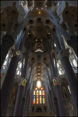DSC_5244.jpg (Adam Lznsk) Tags: vacances espagne barcelone catalogne