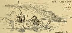 Anglų lietuvių žodynas. Žodis gray flounder reiškia pilka plekšnė lietuviškai.