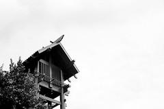 Watchtower (Casey Lombardo) Tags: blackandwhite bw film architecture losangeles structures 400tx negativespace yashica littletokyo watchtower yashicaelectro35 trix400 vigilence kodaktx400