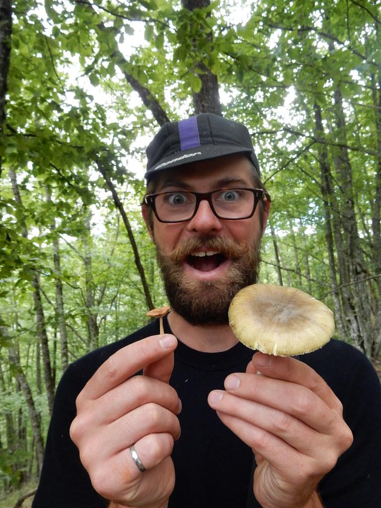 Mushrooms!!