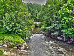Brcena de Ebro (Rafa Gallegos) Tags: espaa naturaleza nature ro river spain cantabria polla valderredible ropolla brcenadeebro
