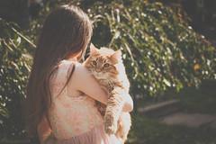 Rosebud Hugs (Kilkennycat) Tags: friends portrait cat canon children outside photography ginger hug child tabby kitty goingforawalk catwalk girlandcat 500d kilkennycat 40mm28 t1i ryanconners