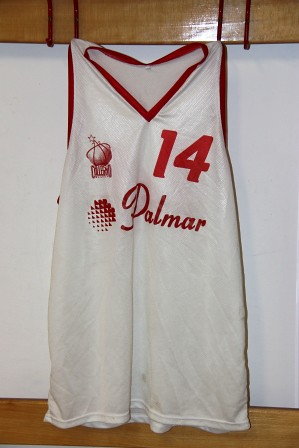 PALMAR Collegno Basket
