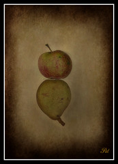 Fruit reflections (patrick.verstappen) Tags: reflection texture apple fruit photo google nikon flickr belgium sigma pear facebook picassa ahoo gingelom ipernity d5100 pinterest ipiccy picmonkey