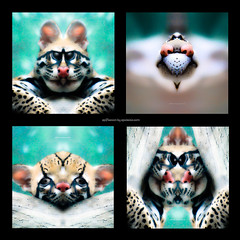 f e l i n e . f o u r s o m e (epiclectic) Tags: reflection animal photoshop mirror design graphic wildlife humor perspective manipulation images symmetry reflect symmetrical mutant twisted enhancement epiclecticcom epiflection epiflectionbyepiclecticcom