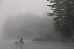 Morning Mist on Rollins Pond (rosco-photo) Tags: morning family camping friends mist fog outdoors adirondacks andre canoe rollinspond adirondackpark