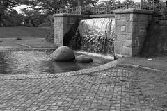 Turuoka Park (harumichi otani) Tags: park blackandwhite bw japan blackwhite waterfall monochrom turuoka leicax2 leicammonochrom