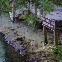 Canoes only (nrparsons) Tags: pentax kayaking canoeing centralflorida wekiwasprings k01 wekivariver yashicaml50mmf17