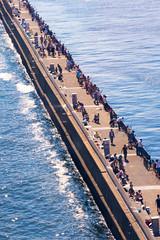 sea japan tokyo overlook angler kotoku fishingspot wakasu d7100 tokyogatebridge tamronsp70300mmf456