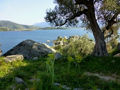 Bafa Lake, Milas, Turkey (east med wanderer) Tags: lake turkey village turkiye turchia turkei milas bafalake lakebafa kapikiri worldtrekker