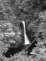 img3717-med (matthauer) Tags: 120 film oregon waterfall bronica asteria buttecreek bronicaetrsi scottsmill buttecreekfalls