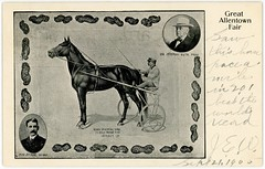 Dan Patch, Race Horse, Great Allentown Fair, 1905 (Alan Mays) Tags: ephemera postcards paper printed danpatch horses animals racehorses horseracing harnessracing hersey harryhersey men drivers savage mwsavage owners roth jeremiahroth unclejerryroth greatallentownfair allentownfair fairs sulkies carts peanuts illustrations borders allentown pa lehighcounty pennsylvania september21 1905 1900s antique old vintage typefaces type typography fonts