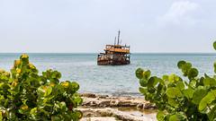 Epave - Marigot - [Saint-Martin] (Thierry CHARDES) Tags: chou marigot bateau cargo sigma1750mmf28 frenchwestindies antilles carabes caribbean france