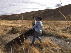 IMG_1424 (Oregon Natural Desert Association) Tags: denny jones ranch weed mat removal 2016 stewardship trips