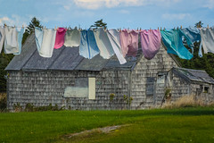 On the Line (A Great Capture) Tags: ig charm maritimes eastcoast washing outdoor outdoors day beautiful bright vibrant colorful colourful canada canadian photographer northamerica ash2276 ashleylduffus ald fall autumn agreatcapture agc wwwagreatcapturecom adjm freshly washed clothes line hanging out dry drying clothesline laundry clean canso novascotia old building shed ns 2009 clothespins fresh breeze wind bluesky