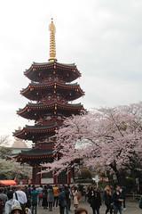 Kawasaki Daishi Pagoda (Toni Kaarttinen) Tags: japan  japonia    jap japonsko jaapan  japani japon xapn    japn jepang an tseapin giappone  japna japonija  japo  japonska japn hapon  japonya nht bn japanese kawasaki spring daishi kawasakidaishi pagoda hanami sakura cherryblossoms