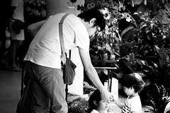 Father and his children (Marsh.mis) Tags: blue streetphotography street singapore tiong bahru chinatown asia canon photo black blackandwhite bnw white father kids children helping chinese man city