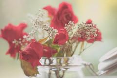 Past their prime? (paulapics2) Tags: fleur floral flora blumen rose rosa driedflower nature age beauty canoneos5dmarkiii sigma105mm depthoffield roses jar old babysbreath vintage