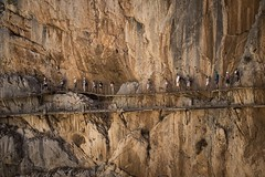 Caminito del Rey. (Paul Ainger) Tags: shear rockface hardhats walkway damns cliffedge high danger rocks landscapephotography landscape spain caminitodelrey