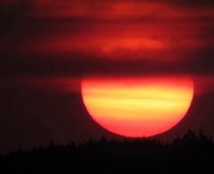 Sunset  - Sonnenuntergang - Tramonto - Coucher du Soleil - Pr do Sol  -- Gn Batm -- (eagle1effi) Tags: sx60 sunset sun sonnenuntergang tramonto coucher du soleil pr do sol gn batm