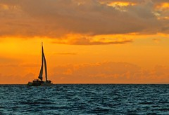 Sail into the Maui sunset (Debangsu) Tags: ngc sailboats sail catamaran sea seascape ocean pacific maui hawaii sky landscape clouds beautiful beauty sunset water boat travel island blue sun sailing aloha lanai fall