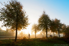 People in the autumn sun (Explore 2016-11-22) (Johan Konz) Tags: sunrise autumn trees people cyclist bike noordhollandschkanaal canal sky outdoor road purmerend netherlands serene nikon d90 landscape atmosphere autumncolors