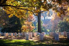 Arlington (Kieran Campbell) Tags: arlington dc usa washington cemetery graveyard military virginia unitedstates