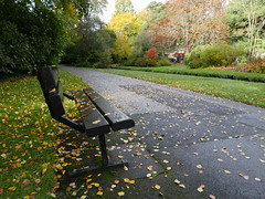 Autumn colours (dawn.v) Tags: autumncolours autumn fall bournemouth dorset uk england october 2016 bournemouthgardens lumixlx100 bench