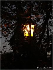 Heimeliges Laternenlicht - Klosterinsel Rheinau (Jolanda Donn) Tags: laternen lichtundschatten klosterrheinau rhein kantonzrich oktober oktober2016 30102016 canoneos5dmarkiv