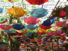 Ain't no sunshine {Explore Dec 1 2016] (eMMa_bOOm) Tags: dubai miraclegarden sunshine umbrellas coloured colours colourful desert sooc flowers cheerful explore
