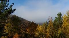 Autumnal Ahr Valley (lstr  clonn) Tags: wein herbst autumn wine rotweinwanderweg germany rhineland leaves