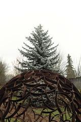 Arc du Treeomphe (Brendan Adkins) Tags: pittmanadditionhydropark fujifilmx100t rust sphere sculpture lattice evergreen tree preindustrialromanticismisfoolingitself